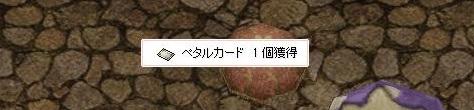 f0101947_16141377.jpg