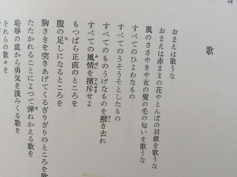 赤まんまの花_b0050651_1051519.jpg