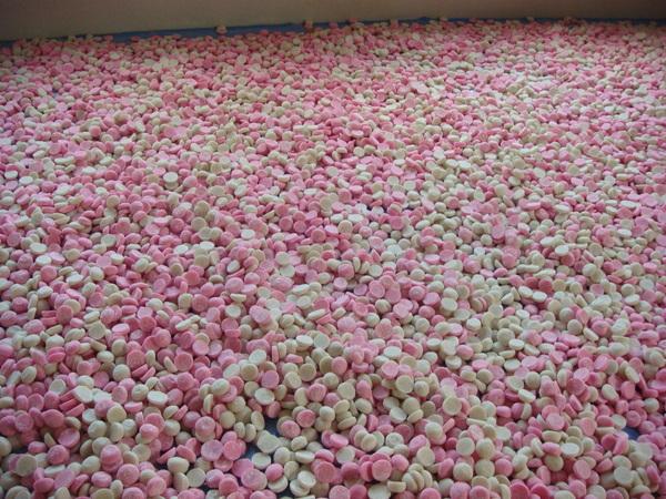 第65回真珠祭 開催_a0180052_18422997.jpg