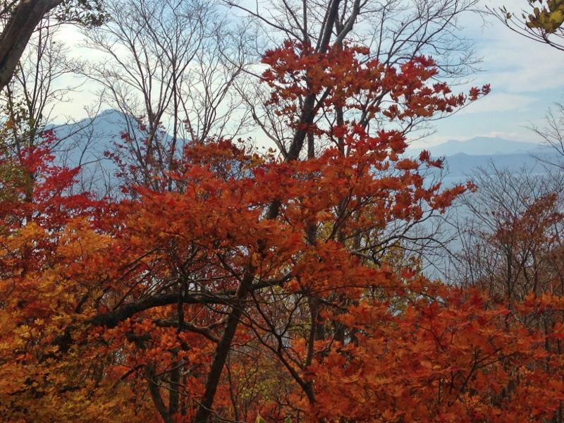 紋別岳~\'15/10/18_e0326953_204042.jpg