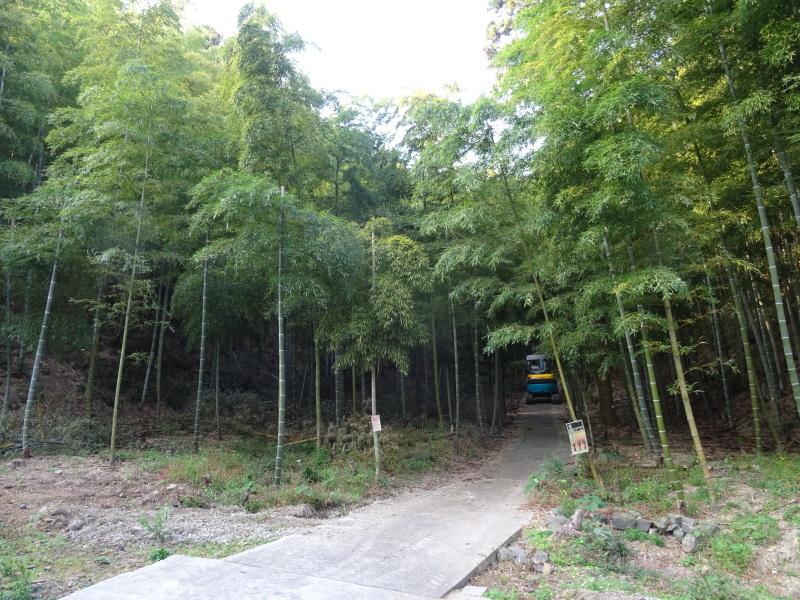 多奈川財産区「竹の里」訪問_c0108460_16102926.jpg