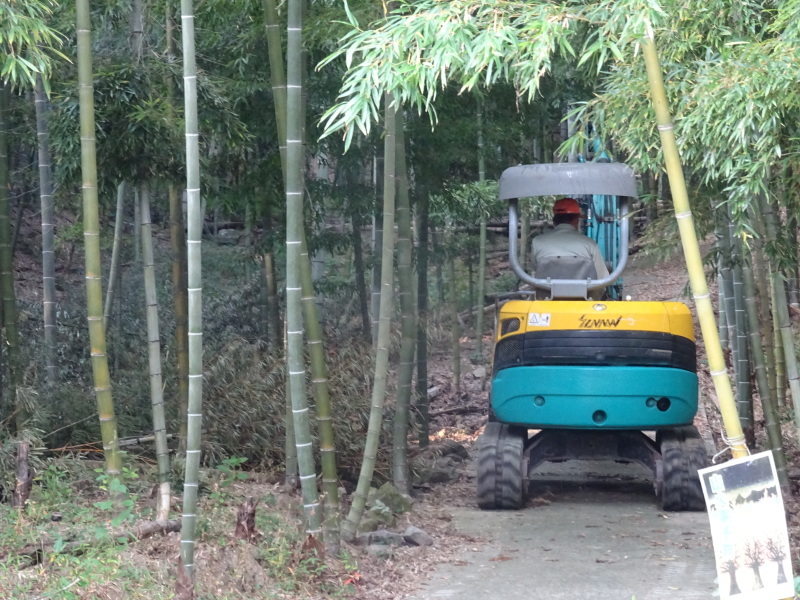 多奈川財産区「竹の里」訪問_c0108460_16103911.jpg