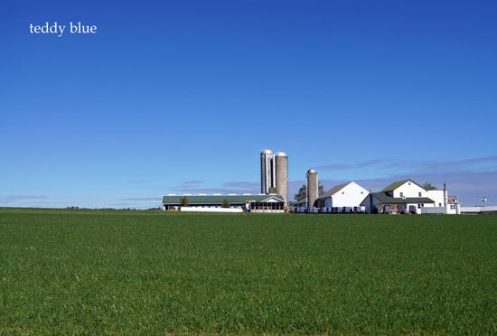 Amish country  アーミッシュカントリーへ_e0253364_19365426.jpg