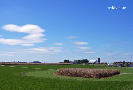 Amish country  アーミッシュカントリーへ_e0253364_1941940.jpg