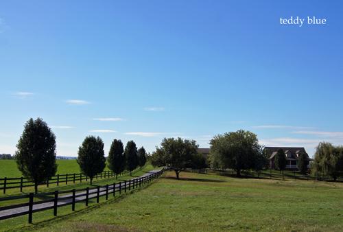 Amish country  アーミッシュカントリーへ_e0253364_19454667.jpg