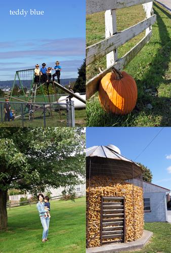 Amish simple living  アーミッシュ シンプルリビング_e0253364_22504252.jpg