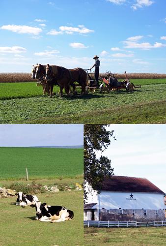 Amish simple living  アーミッシュ シンプルリビング_e0253364_22564274.jpg