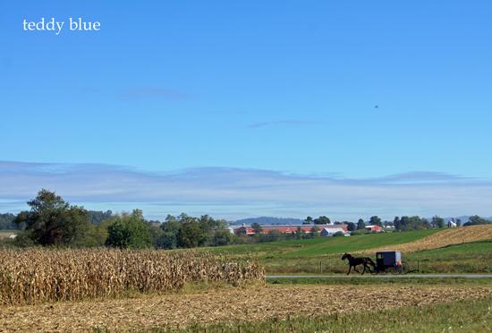 Amish simple living  アーミッシュ シンプルリビング_e0253364_23132894.jpg