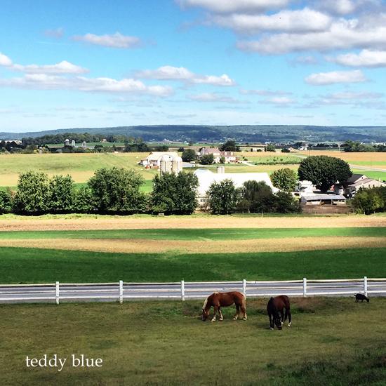 Amish country  アーミッシュカントリーへ_e0253364_2322126.jpg