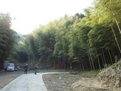 多奈川財産区「竹の里」訪問    by   (ナベサダ)_f0053885_19265747.jpg