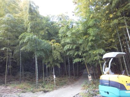 多奈川財産区「竹の里」訪問    by   (ナベサダ)_f0053885_1926672.jpg