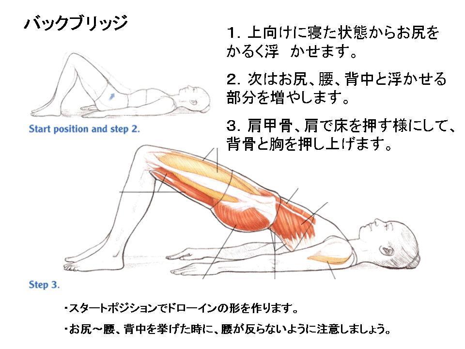 体幹トレーニングの効果的な方法(バックブリッジ)_c0362789_23563497.jpg