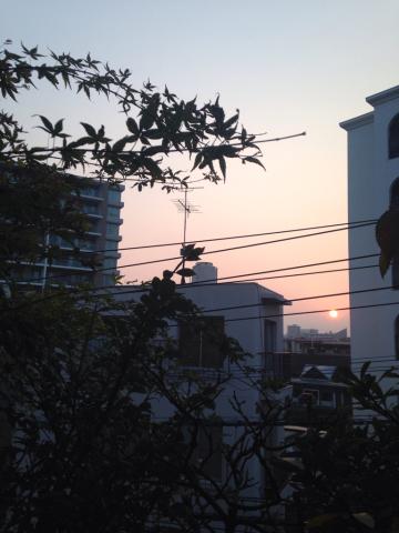 夜明け前_e0330790_16285288.jpg