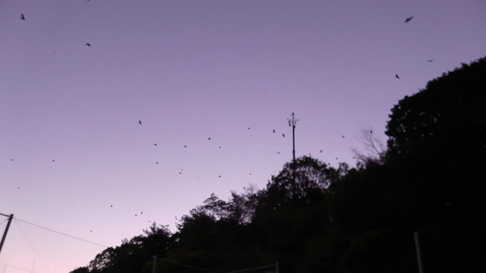ゆるUNO 10/18(日) at 男山レク_a0059812_15111816.jpg