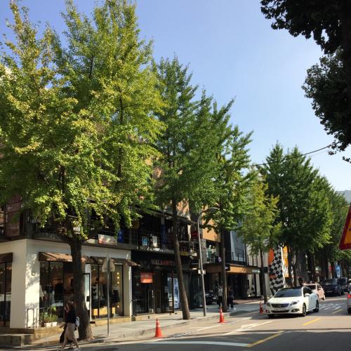 15年SWソウル  8★新沙周辺をお散歩_d0285416_08530950.jpg
