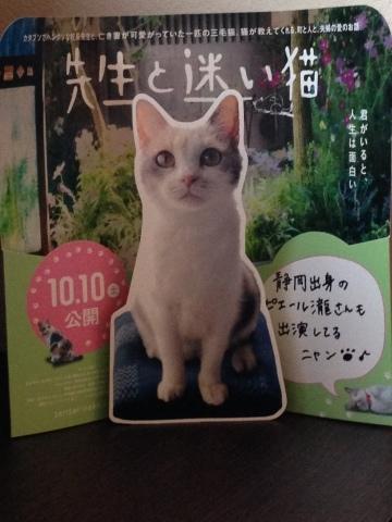 映画 先生と迷い猫_c0006826_14114139.jpg
