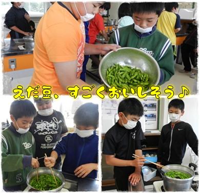 枝豆収穫なのだ!_c0259934_09140817.png