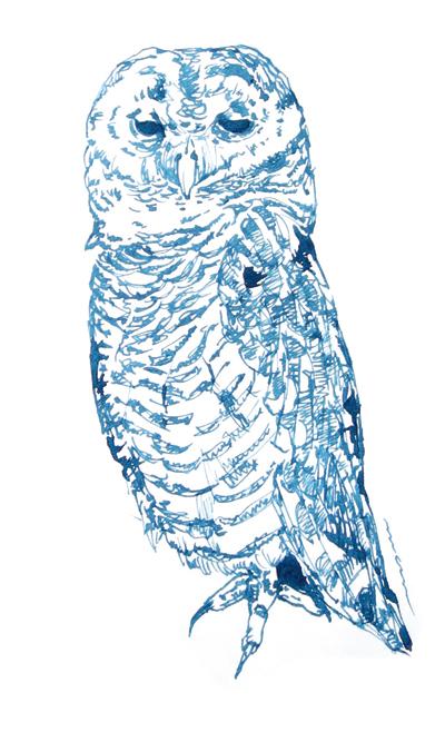 きょうのCAFE Zoo〜弘法も筆を選ぶやガラスペン_a0017350_06500120.jpg