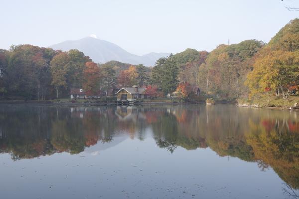 北軽井沢の秋は今が盛りです_c0341450_22102426.jpg