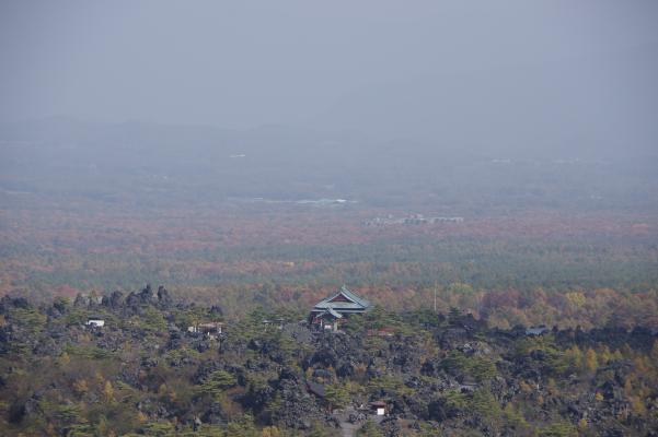 北軽井沢の秋は今が盛りです_c0341450_22162944.jpg