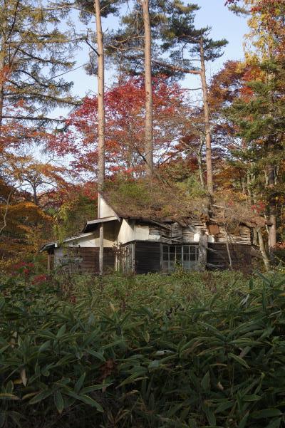 北軽井沢の秋は今が盛りです_c0341450_2285798.jpg