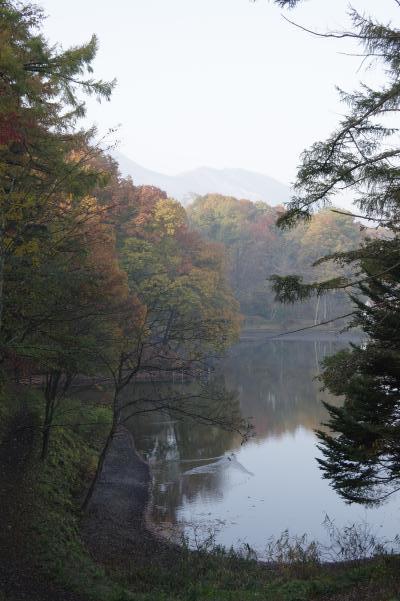 北軽井沢の秋は今が盛りです_c0341450_2293660.jpg