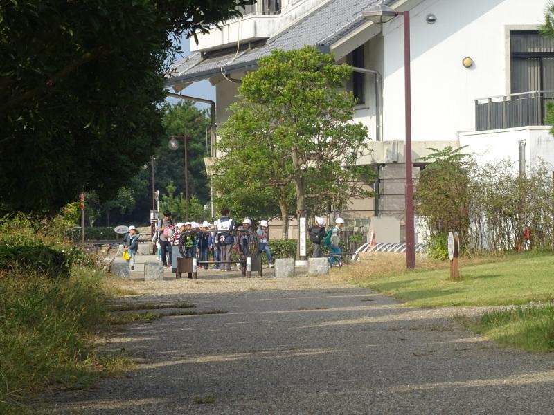 淡輪小学校1年生遠足サポート「里山体験」  in うみべの森_c0108460_21443060.jpg