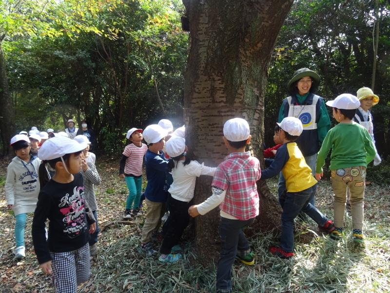 淡輪小学校1年生遠足サポート「里山体験」  in うみべの森_c0108460_22062831.jpg