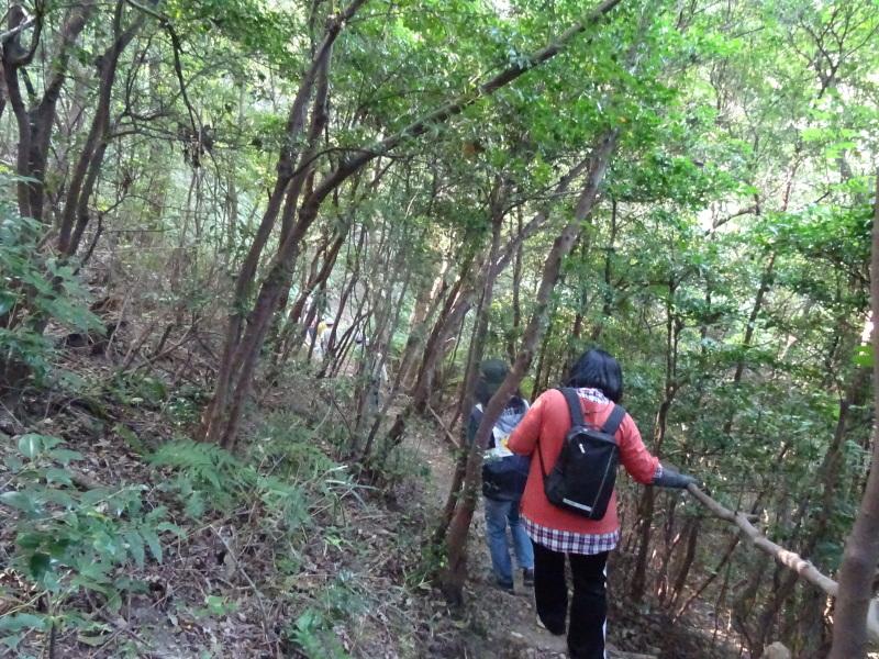 淡輪小学校1年生遠足サポート「里山体験」  in うみべの森_c0108460_22063113.jpg