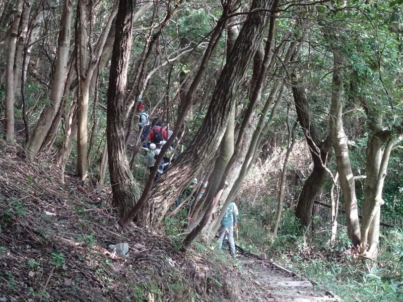 淡輪小学校1年生遠足サポート「里山体験」  in うみべの森_c0108460_22081946.jpg