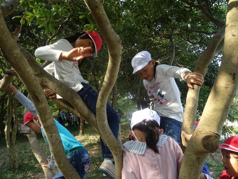淡輪小学校1年生遠足サポート「里山体験」  in うみべの森_c0108460_22273230.jpg