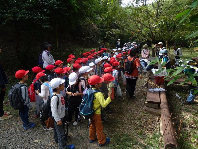 淡輪小学校1年生遠足サポート「里山体験」  in うみべの森_c0108460_22311909.jpg