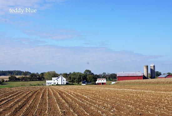 Amish country  アーミッシュカントリーへ_e0253364_1149260.jpg