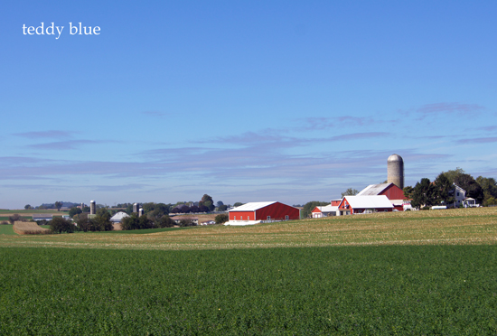 Amish country  アーミッシュカントリーへ_e0253364_11502459.jpg