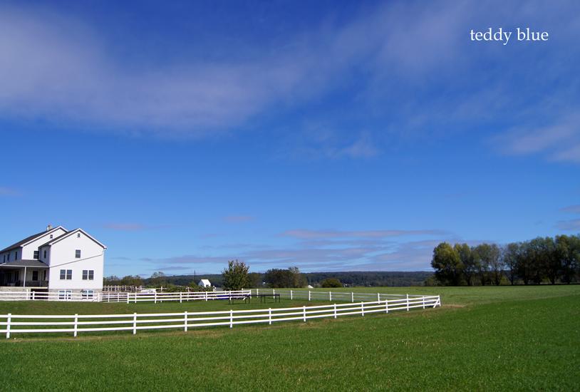 Amish country  アーミッシュカントリーへ_e0253364_921361.jpg