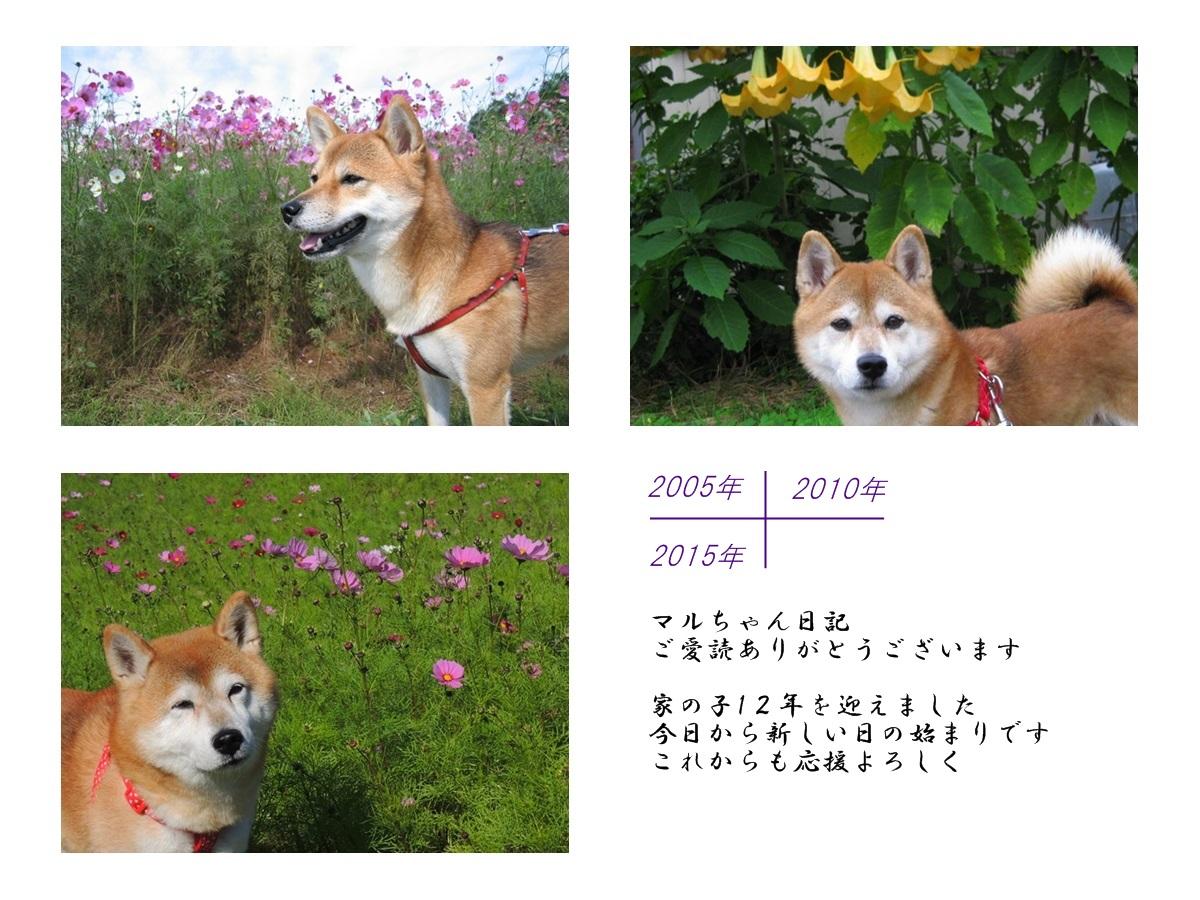b0149072_223565.jpg