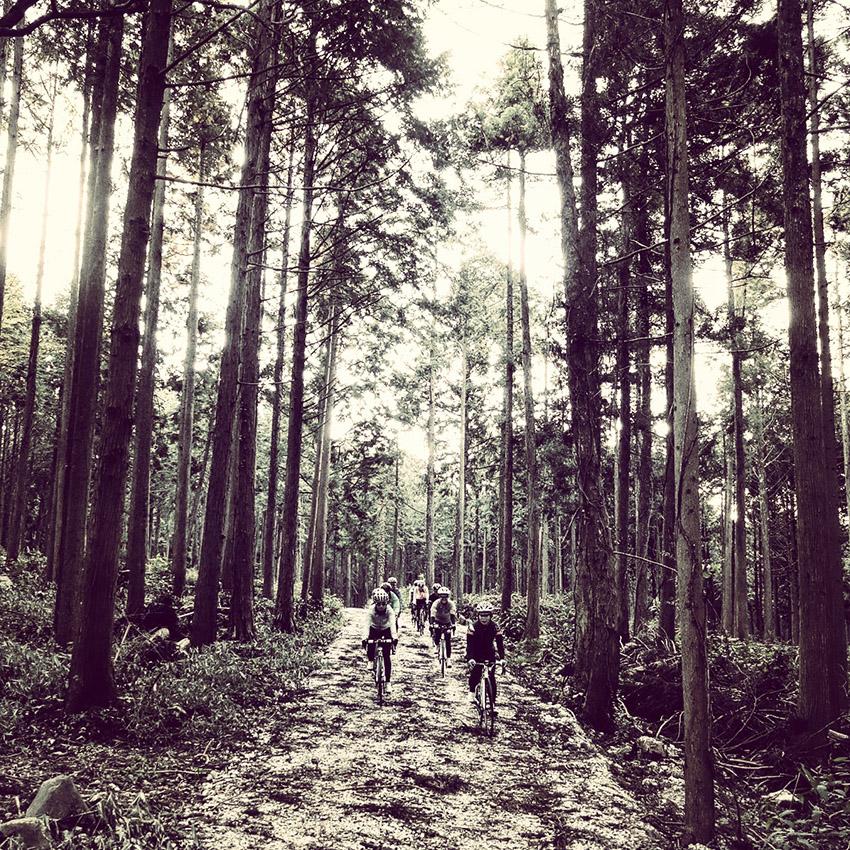 10月19日(月)に開催された「voyAge touring \'Le Tour de Yamaguchi 190km\'」的日記_c0351373_1011504.jpg