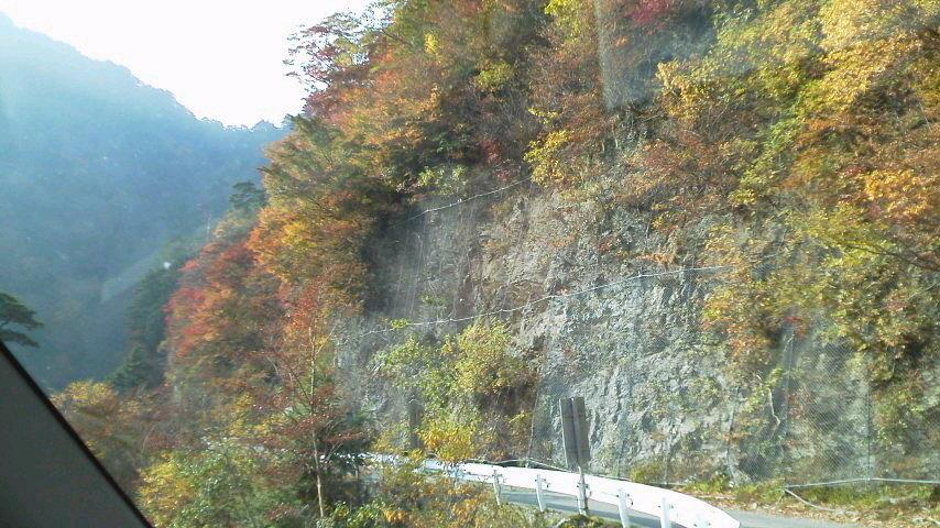 10月23日・気か付けば、紅葉は見ノ越周辺にかけ降りていました。朝の気温か6℃近くあって、ほんまに暖かく過ごしやすいこの秋です。_c0089831_154583.jpg