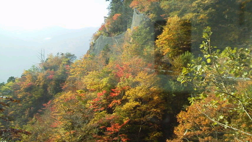 10月23日・気か付けば、紅葉は見ノ越周辺にかけ降りていました。朝の気温か6℃近くあって、ほんまに暖かく過ごしやすいこの秋です。_c0089831_1545869.jpg