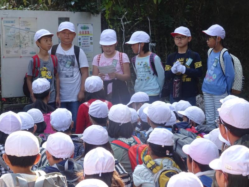 東光小学校4年生遠足「里山体験」サポート in うみべの森_c0108460_21184122.jpg
