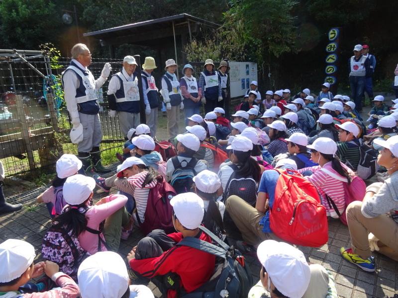 東光小学校4年生遠足「里山体験」サポート in うみべの森_c0108460_21184346.jpg
