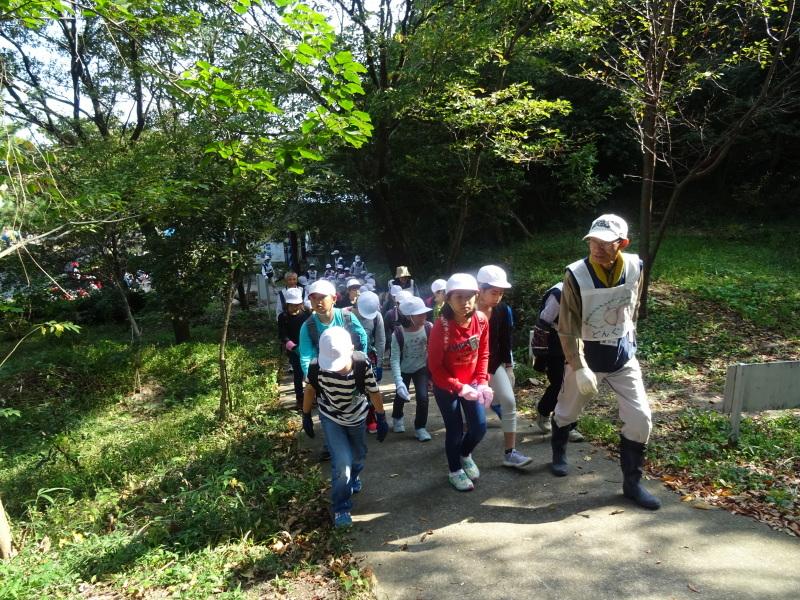 東光小学校4年生遠足「里山体験」サポート in うみべの森_c0108460_21205799.jpg