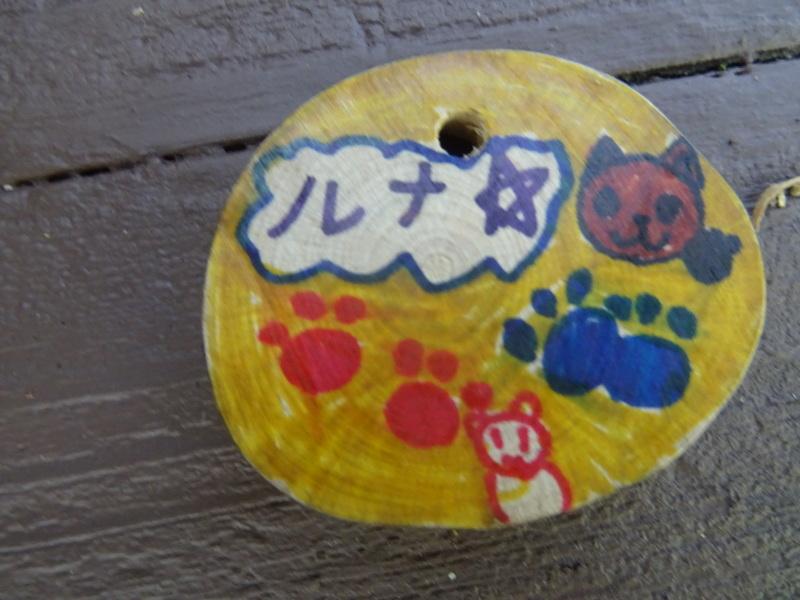東光小学校4年生遠足「里山体験」サポート in うみべの森_c0108460_21260468.jpg