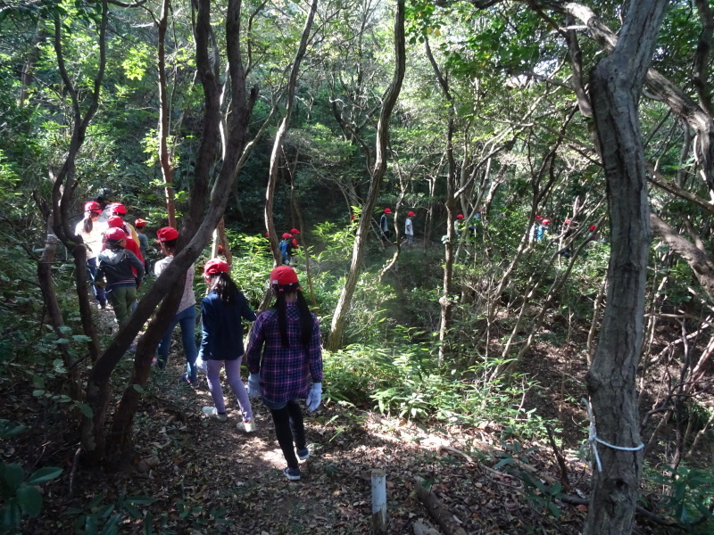 東光小学校4年生遠足「里山体験」サポート in うみべの森_c0108460_21303314.jpg