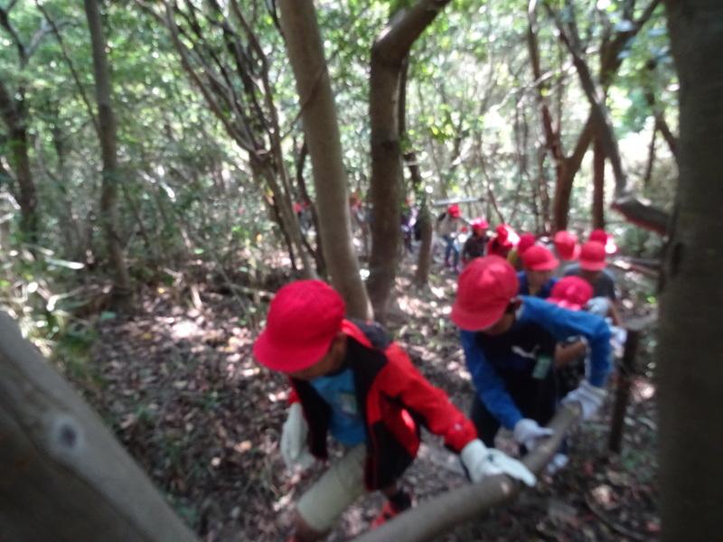 東光小学校4年生遠足「里山体験」サポート in うみべの森_c0108460_21304150.jpg