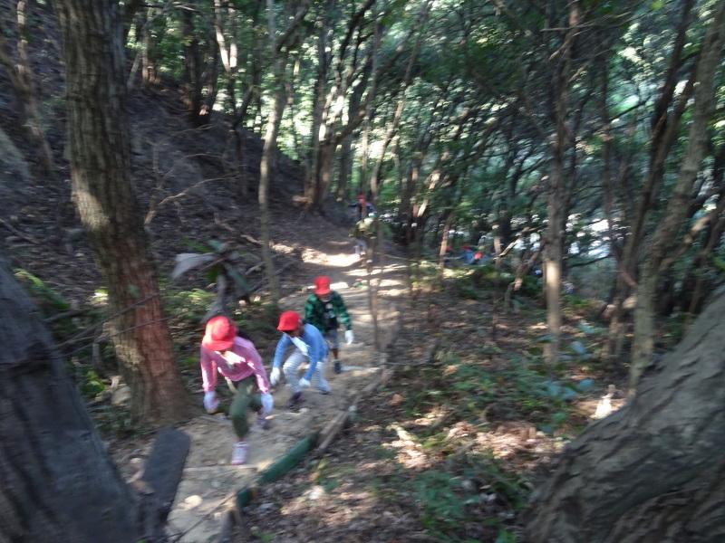 東光小学校4年生遠足「里山体験」サポート in うみべの森_c0108460_21322096.jpg