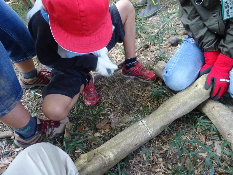 東光小学校4年生遠足「里山体験」サポート in うみべの森_c0108460_21385426.jpg