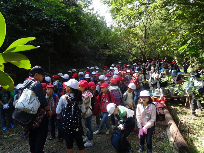 東光小学校4年生遠足「里山体験」サポート in うみべの森_c0108460_21494586.jpg
