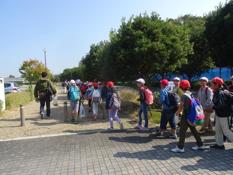 東光小学校4年生遠足「里山体験」サポート in うみべの森_c0108460_22091418.jpg
