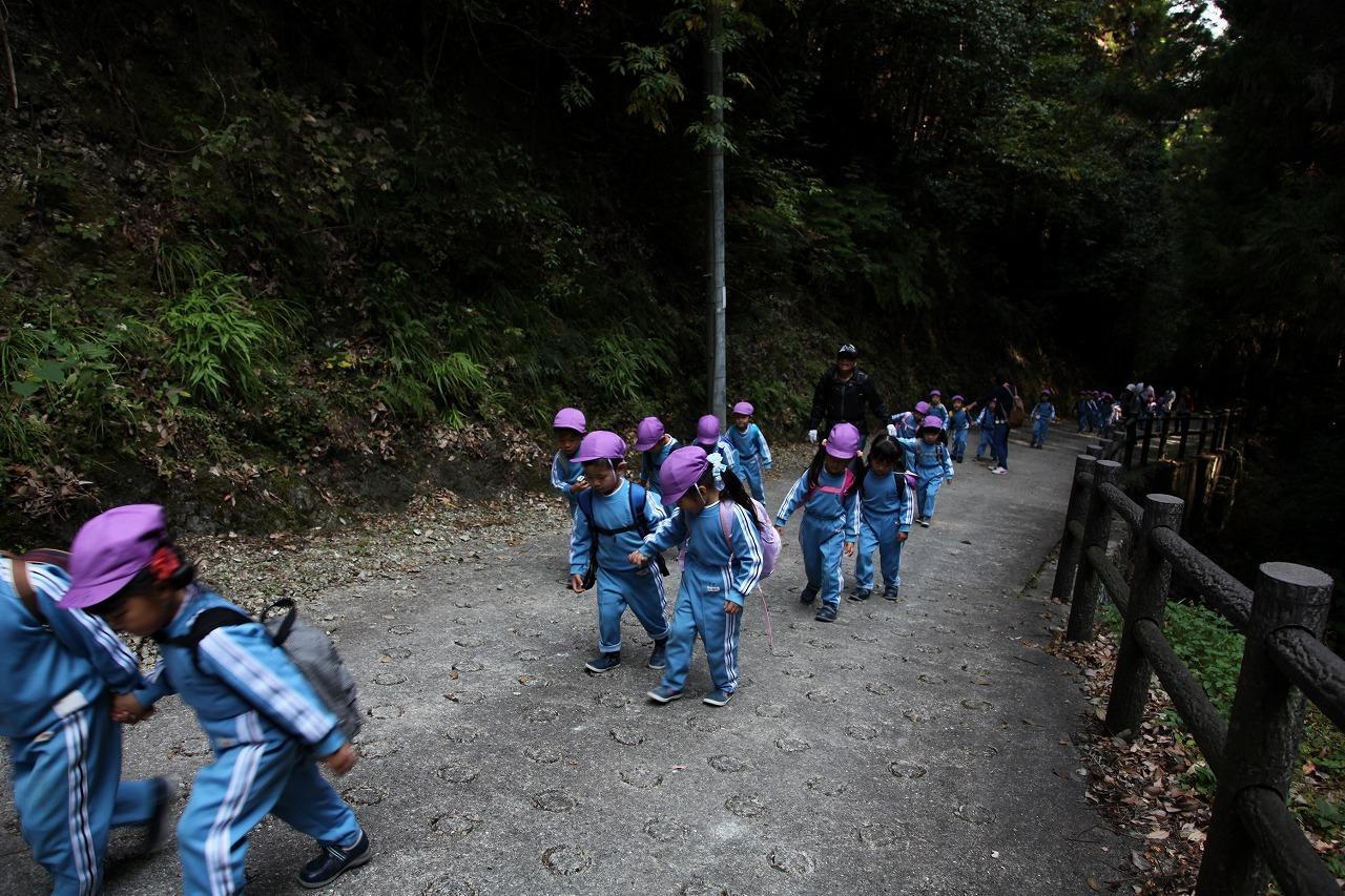 槇尾山登山(年中組)_b0277979_18131223.jpg